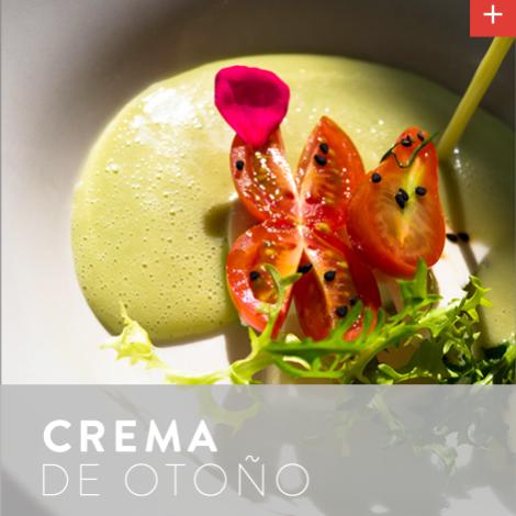 recetaToluca_crema_frente